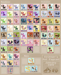 Pet Pageant Cards by Ask-Splash-Sparkz