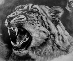 Snow Leopard by Dhekalia
