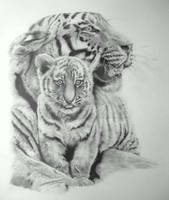 Mother and Cub by Dhekalia