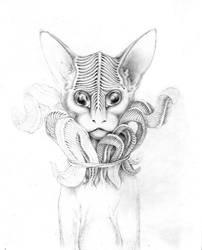 J-cat_3 by SveteG