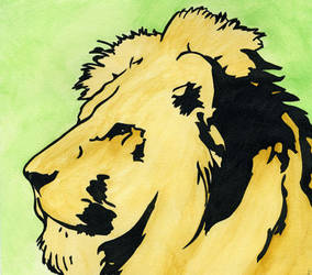 The Lions - Lion by kalamate