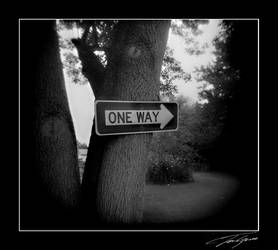 holga one way by electricjonny
