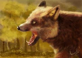fox practice by HavickArt