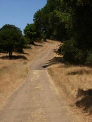 Worn Springs Fire Road by Hawk2064