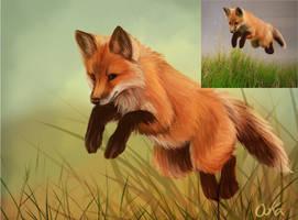 Fox With Ref by 0okamiseishin