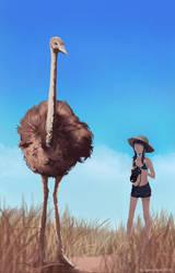 ostrich by dead-robot