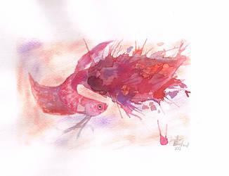 Crimson Splash by OsamuKoizumi