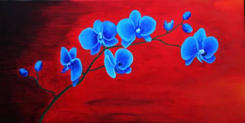 Orchidaceae by Queen-of-darknesss