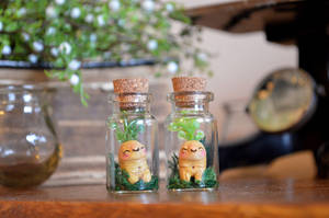 Miniature MANDRAKE ROOTS in a Vial by falauke