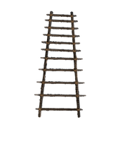 Ladder PNG File by annamae22