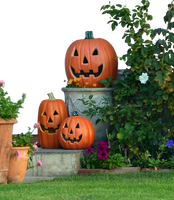 Halloween Pumkin Display Stock Photo DSC 0029 -PNG by annamae22