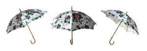 Floral Umbrella 3 Views Stock Photos 0294 PNG by annamae22