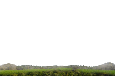 Grass and Distant Land Stock 0110 PNG by annamae22