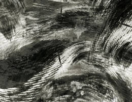 Bush Stroke Abstract Texture Stock in Black White by annamae22