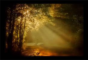 morning landscape 35 by wienwal