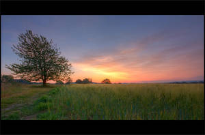 morning landscape 40 by wienwal