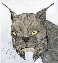 Lynx by Keyrye