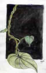 Vine and Leaves by Keyrye
