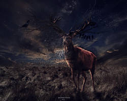 281214 Photomanipulation | The deer by GoFuckYourself69