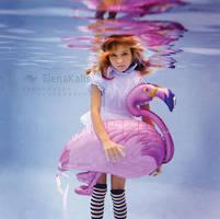 Alice's Flamingo by SachaKalis