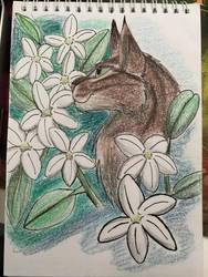 Jasmine by KlutzyNinjaKitty