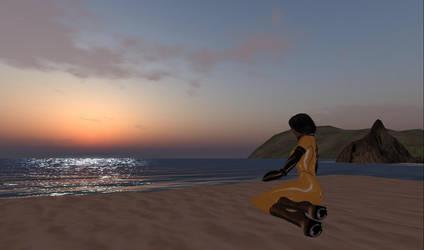 Enjoying the sunset by DaniiSz