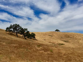 Hills and Sky by Sagehills