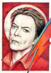 David Bowie tribute by vinegar