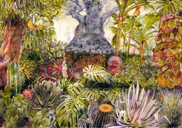 Botanic garden by picasio