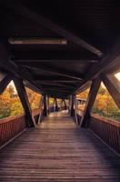 wooden bridge by rayxearl