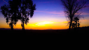 Blythe Sunset by petrosillustrations