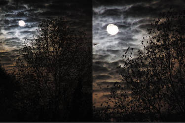 my neighbor's moon by Awi
