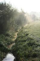 A little stream by Dewfooter