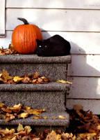 Aura of Halloween by renaboo