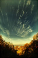 autumn sky by Trifoto