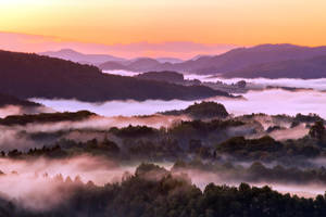 Golden Morning by Matthias-Haker