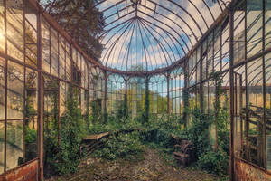 Greenhouse by Matthias-Haker