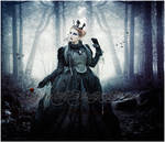 My Velvet Little Darkness by Ariel87