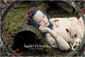 Love Song Requiem by Ariel87