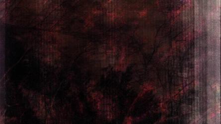 ionbrleivveirosne by Bugsle