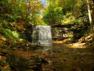 Ricketts Glen State Park 57 by Dracoart-Stock