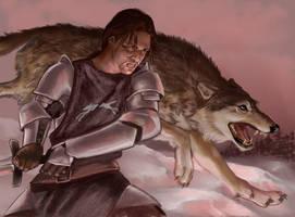 Robb Stark by VVjonez
