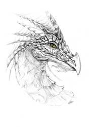 Dragon by Ksar