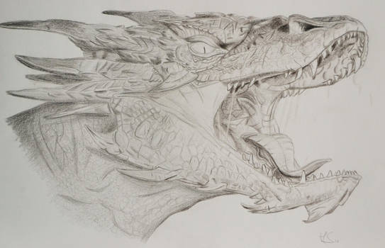 Smaug by whytheface92