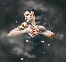 Photomanipulation #10 by Nalby1981