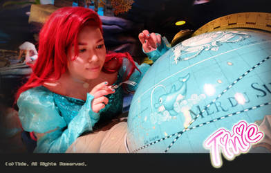 2016 Helloween in Tokyo DisneySea 9 by Tiniehyde