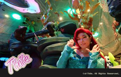 2016 Helloween in Tokyo DisneySea 10 by Tiniehyde