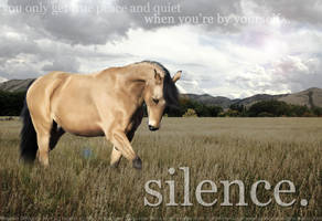 Silence by filly1