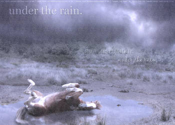 Under the Rain by filly1