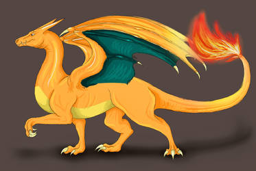 Charizard as Western Dragon by 9-Silver-Shadow-2